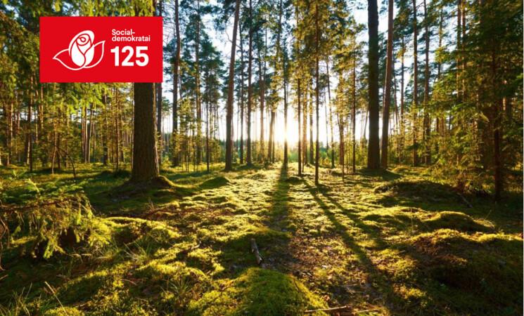 """Gegužės 1-ąją bus sodinamas """"Socialdemokratų miškas"""""""